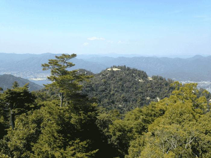 Vue sur la forêt depuis le Mont Misen à Miyajima