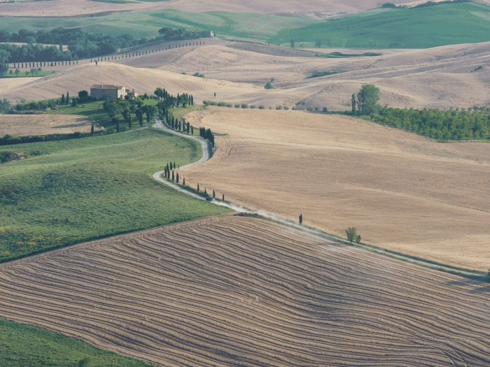 vue aérienne sur les champs
