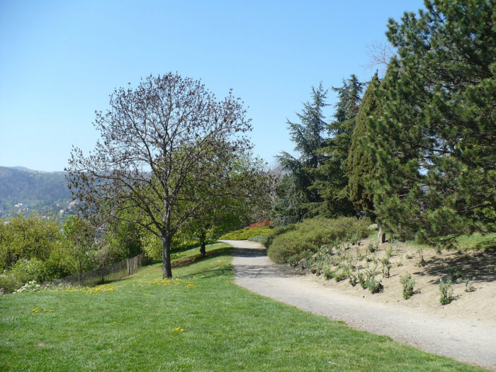 parc public coure à pieds