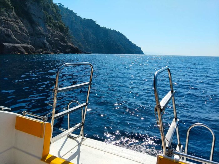 réserve marine portofino en plongée