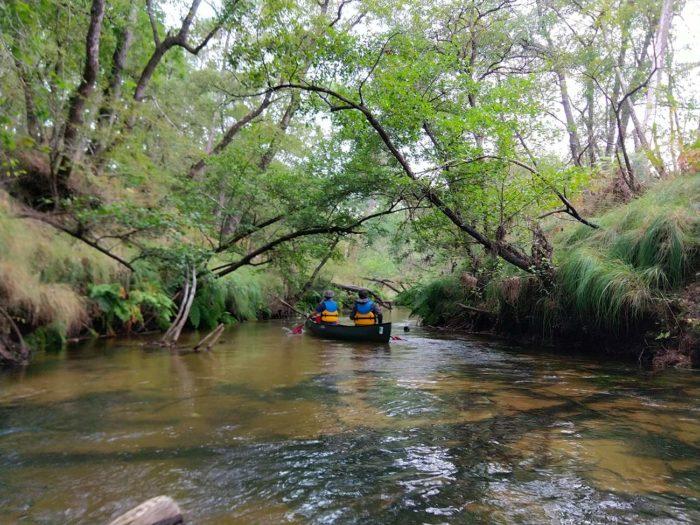 canoë sur la Leyre